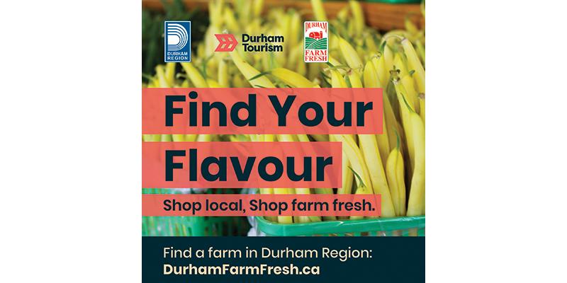 FLAVOUR, Durham Farm Fresh, Durham Tourism
